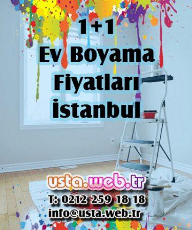 1+1 Ev Boyama Fiyatları İstanbul